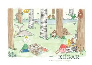 """Boka - """"Edgar møter dyrene i skogen"""""""