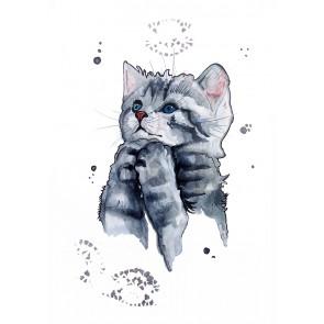 Plakat - Katten Lucy