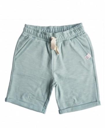 Tage Shorts - Mint
