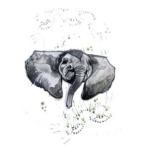 Plakat - Elefanten Elton